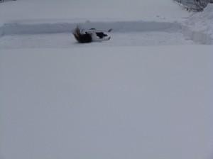 Aomori, Aomori, Climate, Body and Soul: 2013 (c) Sioned Huws